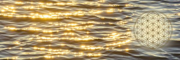 Blume des Lebens in der Abendstimmung auf dem Meer